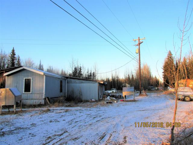 Mi 310 Parks Highway, Nenana, AK 99760 (MLS #19-6470) :: Roy Briley Real Estate Group