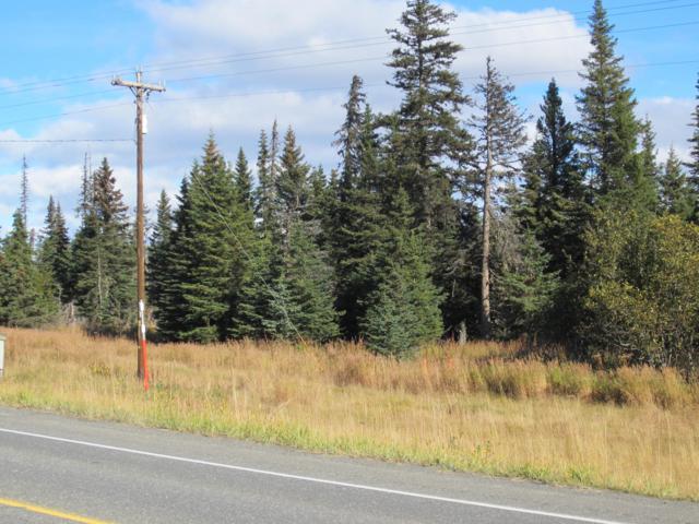 32614 Sterling Highway, Anchor Point, AK 99556 (MLS #19-6479) :: RMG Real Estate Network | Keller Williams Realty Alaska Group