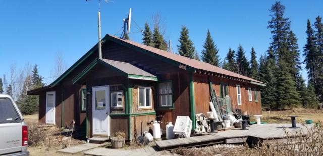 34565 N North Fork Road, Anchor Point, AK 99556 (MLS #19-6490) :: RMG Real Estate Network | Keller Williams Realty Alaska Group