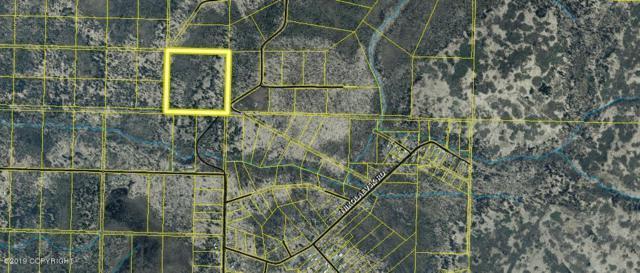 000 Turku Avenue, Anchor Point, AK 99556 (MLS #19-6493) :: RMG Real Estate Network | Keller Williams Realty Alaska Group