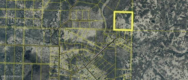 NHN Turku Avenue, Anchor Point, AK 99556 (MLS #19-6494) :: RMG Real Estate Network | Keller Williams Realty Alaska Group
