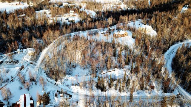 351 N Pioneer View Circle, Wasilla, AK 99654 (MLS #19-674) :: Alaska Realty Experts