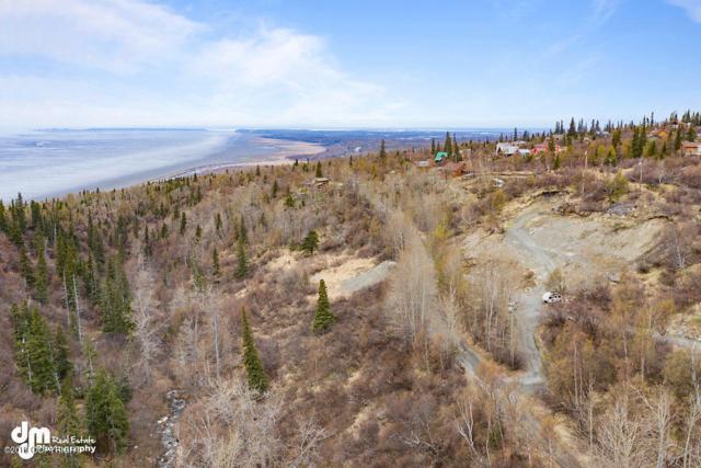 L23 B9 Bulgaria Drive, Anchorage, AK 99516 (MLS #19-6760) :: Roy Briley Real Estate Group