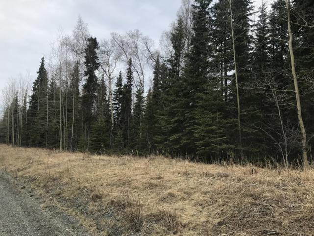 34140 Browns Lake Road, Soldotna, AK 99669 (MLS #19-6782) :: Roy Briley Real Estate Group