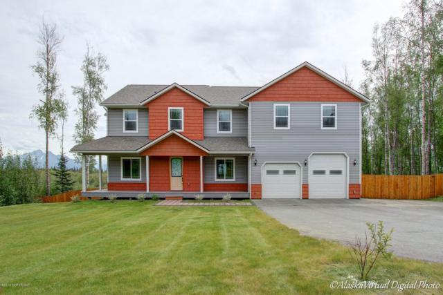 4750 W Yundt Drive, Wasilla, AK 99623 (MLS #19-680) :: Alaska Realty Experts
