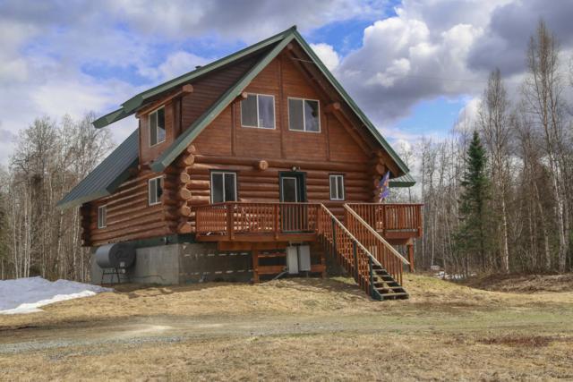 44693 S Bernadette Street, Talkeetna, AK 99676 (MLS #19-6868) :: RMG Real Estate Network | Keller Williams Realty Alaska Group