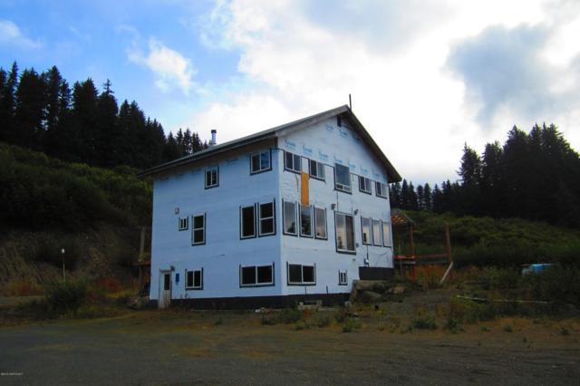1155 S Boone Lane, Seldovia, AK 99663 (MLS #19-6894) :: Roy Briley Real Estate Group