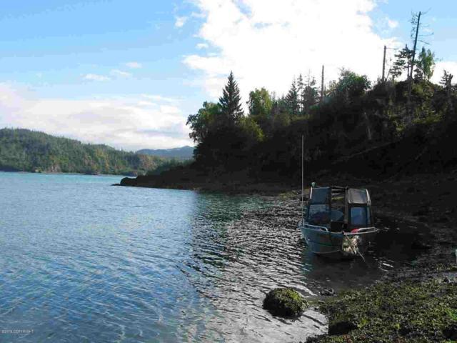 Tr C Asls 76-59 Bear Cove, Homer, AK 99603 (MLS #19-6995) :: Core Real Estate Group
