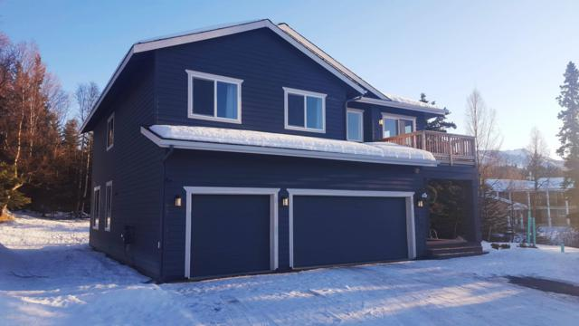 13425 Carita Lane, Anchorage, AK 99516 (MLS #19-706) :: RMG Real Estate Network | Keller Williams Realty Alaska Group