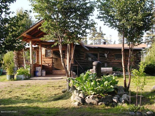 27430 Warbler Circle, Anchor Point, AK 99556 (MLS #19-7097) :: RMG Real Estate Network | Keller Williams Realty Alaska Group