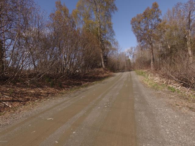 L2 Golik Lane, Nikiski/North Kenai, AK 99635 (MLS #19-7113) :: RMG Real Estate Network | Keller Williams Realty Alaska Group