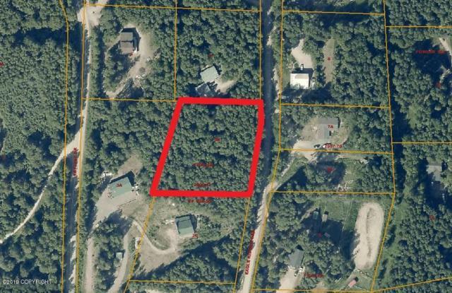 475 Eagle Ridge Road, Fairbanks, AK 99712 (MLS #19-7151) :: Roy Briley Real Estate Group