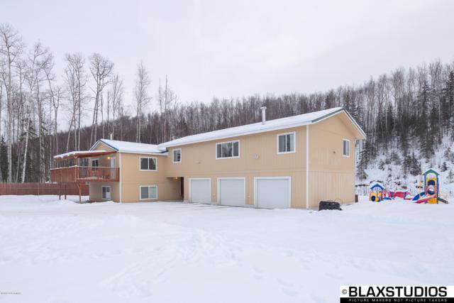 14394 Norcross Street, Wasilla, AK 99654 (MLS #19-733) :: RMG Real Estate Network | Keller Williams Realty Alaska Group
