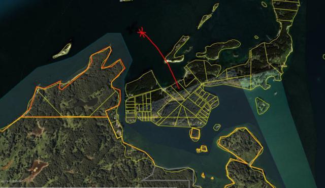 000 Anton Larsen Island, Kodiak, AK 99615 (MLS #19-7344) :: RMG Real Estate Network | Keller Williams Realty Alaska Group