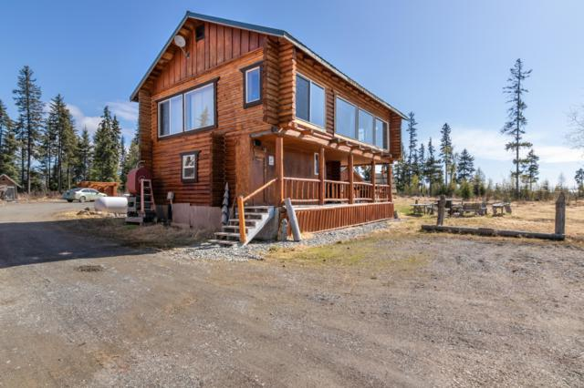 28160 Chestes Street, Anchor Point, AK 99556 (MLS #19-7379) :: Roy Briley Real Estate Group