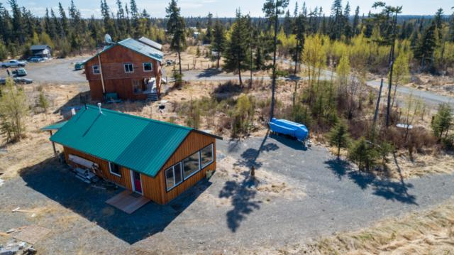 28160 Chestes Street, Anchor Point, AK 99556 (MLS #19-7381) :: Roy Briley Real Estate Group