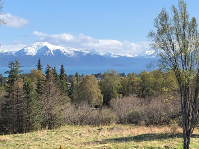 920 Father Dean Court, Homer, AK 99603 (MLS #19-7385) :: Roy Briley Real Estate Group