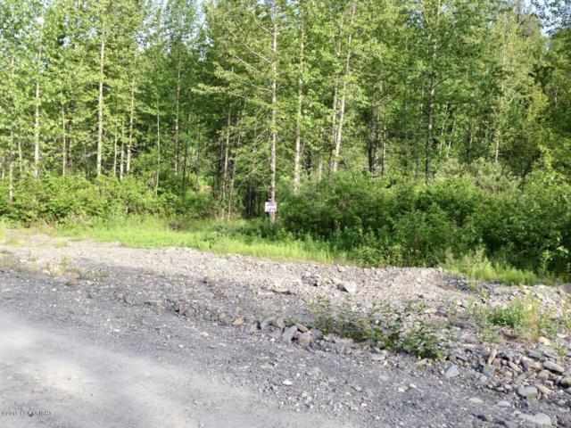 7390 S Cache Creek Drive, Trapper Creek, AK 99683 (MLS #19-7398) :: Core Real Estate Group