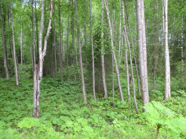 Lot 7 S New Sandee Circle, Big Lake, AK 99652 (MLS #19-740) :: Core Real Estate Group