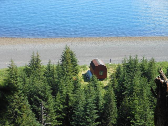 L5 Losos Cove, Seldovia, AK 99663 (MLS #19-7451) :: Roy Briley Real Estate Group