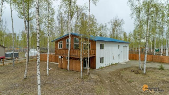 14941 W Wild Rose Circle, Big Lake, AK 99652 (MLS #19-7452) :: Roy Briley Real Estate Group