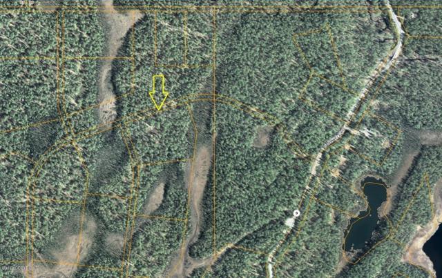 L9-1 B4 Asls #80-152 (No Road), Trapper Creek, AK 99683 (MLS #19-7572) :: Core Real Estate Group