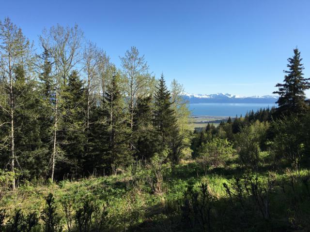 L3 Skyline Drive, Homer, AK 99603 (MLS #19-7596) :: RMG Real Estate Network | Keller Williams Realty Alaska Group