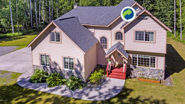 5341 E Mcdowell Road, Wasilla, AK 99654 (MLS #19-760) :: RMG Real Estate Network | Keller Williams Realty Alaska Group
