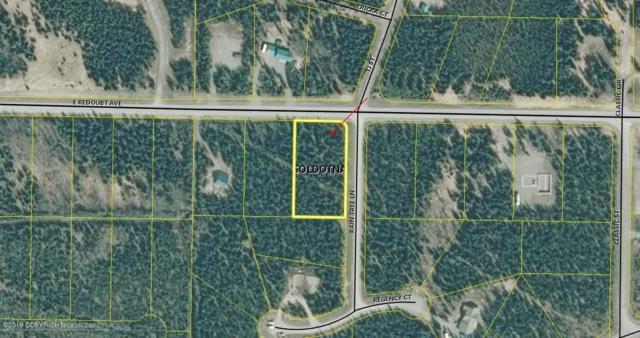 121 Rain Tree Lane, Soldotna, AK 99669 (MLS #19-7608) :: Roy Briley Real Estate Group
