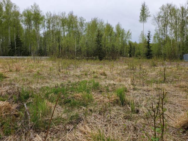 2391 N Meadow Lakes Drive, Wasilla, AK 99623 (MLS #19-7655) :: Roy Briley Real Estate Group