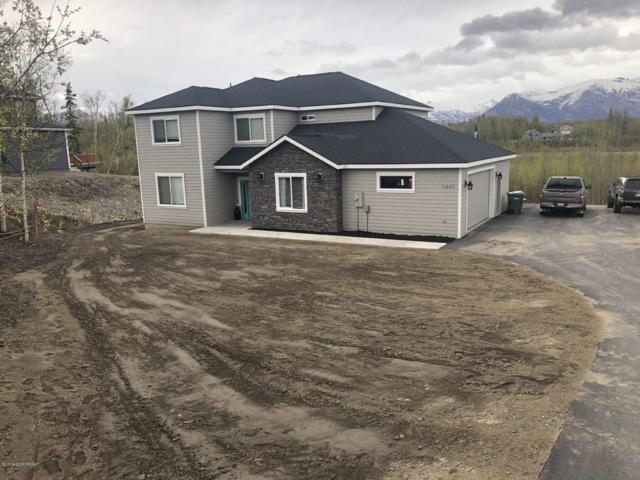 9441 E Spring Creek Circle, Palmer, AK 99645 (MLS #19-7674) :: Alaska Realty Experts