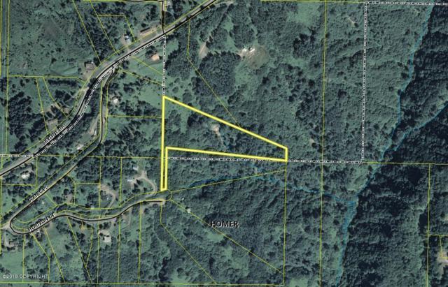 L2 Horizon Court, Homer, AK 99603 (MLS #19-7678) :: Roy Briley Real Estate Group
