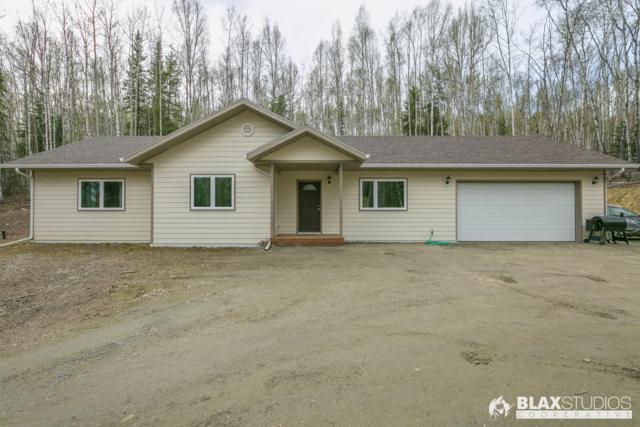 3540 Moose Mountain Road, Fairbanks, AK 99709 (MLS #19-7680) :: Roy Briley Real Estate Group