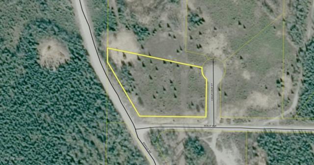 L1 Calla Lilly Court, Sterling, AK 99672 (MLS #19-7695) :: RMG Real Estate Network   Keller Williams Realty Alaska Group