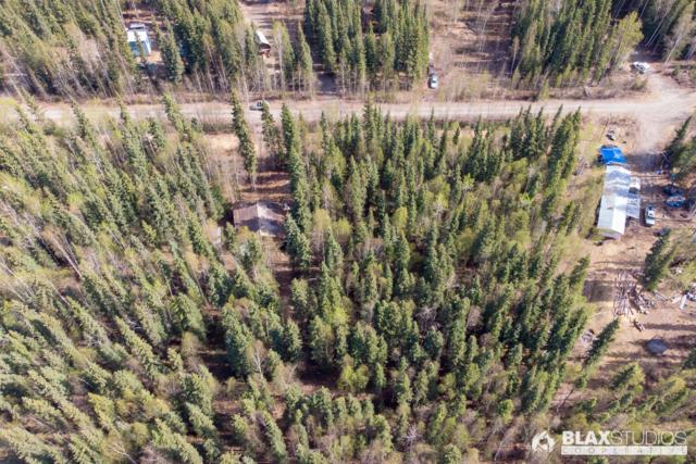 6867/6869 Markgraf Road, Salcha, AK 99714 (MLS #19-7708) :: Core Real Estate Group