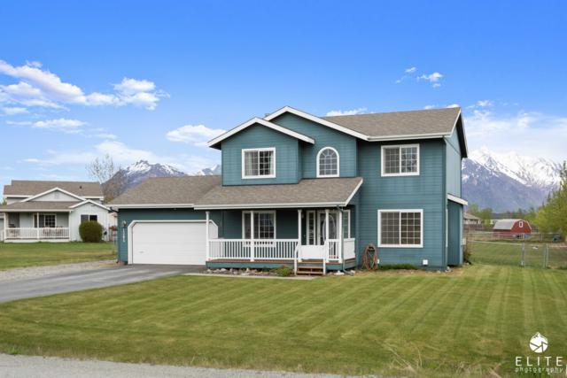 1395 S Pinnacle Mountain Drive, Palmer, AK 99645 (MLS #19-7760) :: Alaska Realty Experts