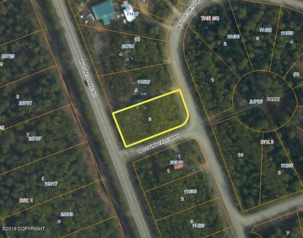 24845 N Blue Sky Drive, Willow, AK 99688 (MLS #19-7768) :: RMG Real Estate Network | Keller Williams Realty Alaska Group