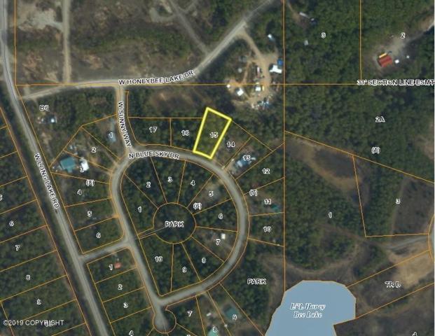 11389 N Blue Sky Drive, Willow, AK 99688 (MLS #19-7770) :: RMG Real Estate Network | Keller Williams Realty Alaska Group