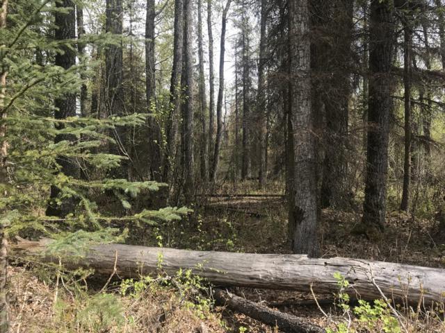 9155 N Lazer Street, Palmer, AK 99645 (MLS #19-7781) :: Alaska Realty Experts