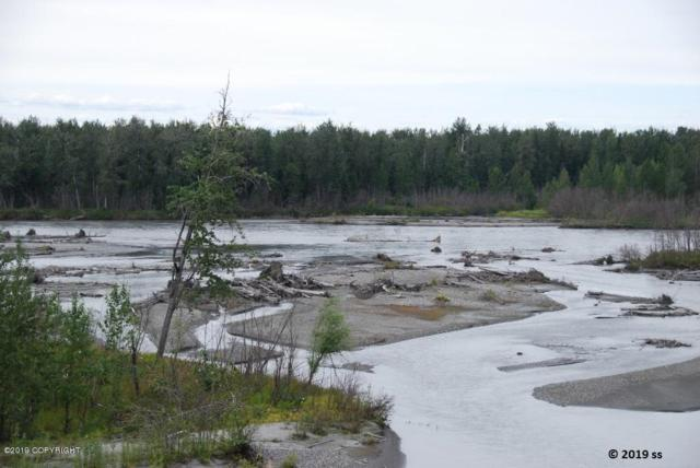 15115 E Fish On Drive, Willow, AK 99688 (MLS #19-7811) :: RMG Real Estate Network | Keller Williams Realty Alaska Group