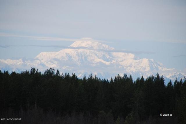 54790 S Salmon Run Road, Willow, AK 99688 (MLS #19-7812) :: RMG Real Estate Network | Keller Williams Realty Alaska Group