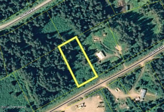2815 Jakolof Bay Road, Seldovia, AK 99663 (MLS #19-7823) :: Roy Briley Real Estate Group
