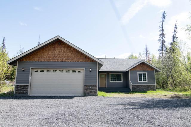 7263 S Lief Street, Wasilla, AK 99623 (MLS #19-7825) :: Alaska Realty Experts