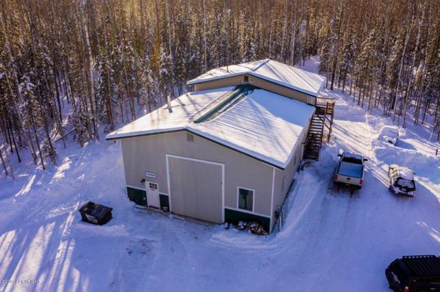 1710 S Elizabeth Drive, Wasilla, AK 99623 (MLS #19-7842) :: Alaska Realty Experts