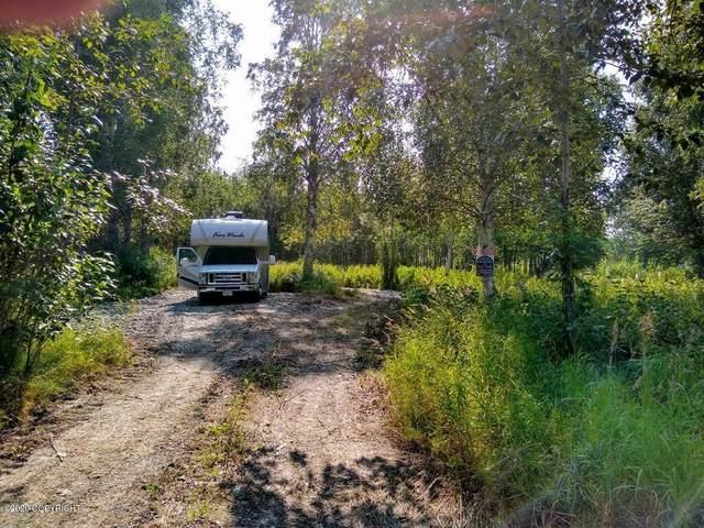 Lot 9 E Prairie Circle, Willow, AK 99688 (MLS #19-7845) :: Team Dimmick