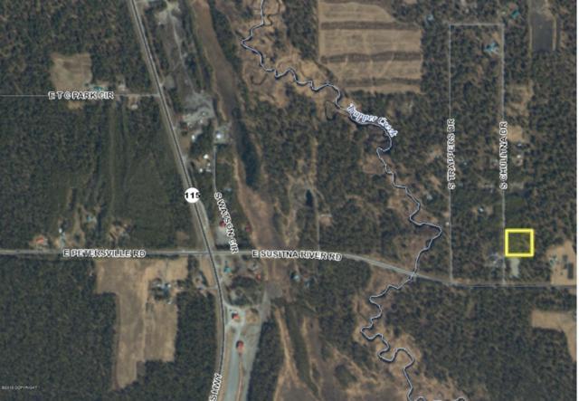 23069 Chulitna Drive, Trapper Creek, AK 99683 (MLS #19-7850) :: Alaska Realty Experts