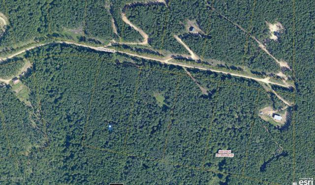 1177 Leuthold Drive, Fairbanks, AK 99712 (MLS #19-7865) :: Roy Briley Real Estate Group