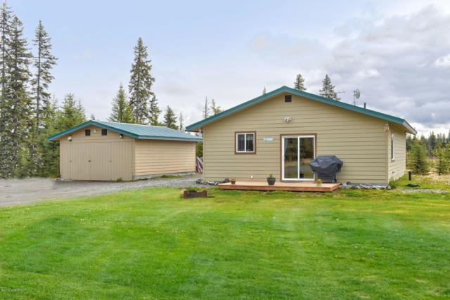 28156 Sterling Highway, Anchor Point, AK 99556 (MLS #19-7886) :: Roy Briley Real Estate Group