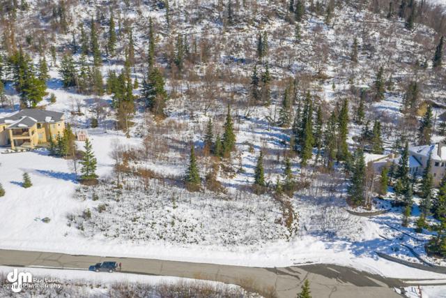 L14 B2 Near Point Knoll, Anchorage, AK 99507 (MLS #19-7929) :: Roy Briley Real Estate Group