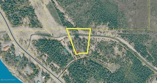 L5 Murphy Lane, Soldotna, AK 99669 (MLS #19-7937) :: Roy Briley Real Estate Group